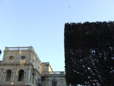 Casa Consistorial 1.jpg