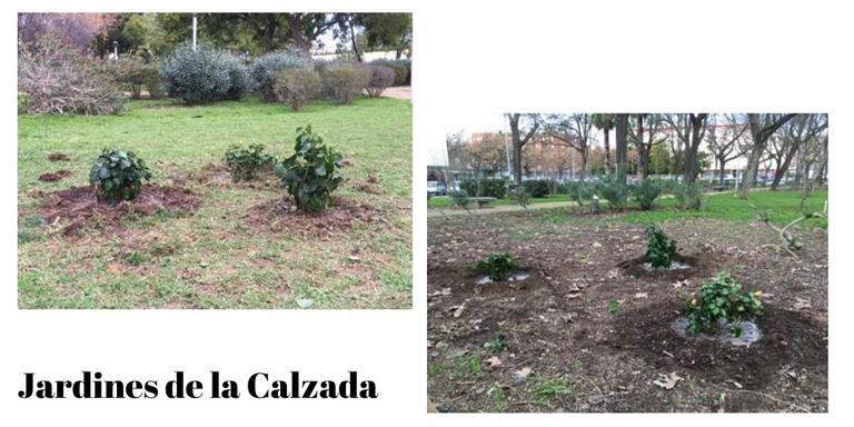 Jardines de la Calzada.png
