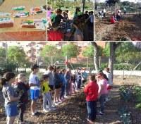(14/6/2017) El Ayuntamiento pone en marcha campamentos urbanos de verano en los huertos de Sevilla