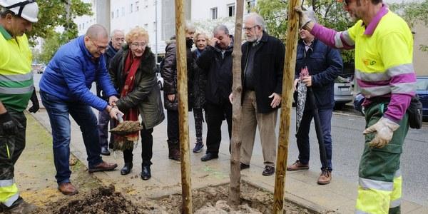 Comienza el programa de plantaciones en Los Bermejales con 11 árboles en la Avenida de Finlandia