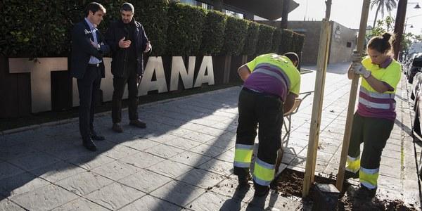 Comienza la plantación de 5.100 árboles y 4.500 arbustos en calles, zonas ajardinadas y parques de toda la ciudad