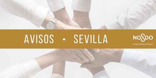 Convocatoria: I Edición de los Premios de la Mujer en Investigación y Creación Literaria ciudad de Sevilla