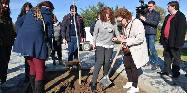 El Ayuntamiento continúa con la plantación de arbolado en el Parque del Tamarguillo junto a la Asociación Paz y Bien
