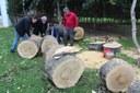 El Ayuntamiento ejecuta con recursos propios de Parques y Jardines un plan especial y urgente de refuerzo de los trabajos de apeo, poda y limpieza por el temporal en el Parque de María Luisa para que pueda reabrir lo antes posible