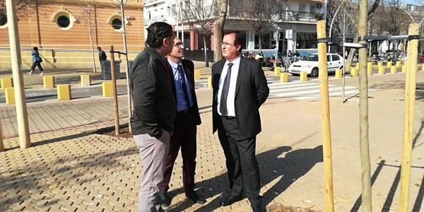 El Ayuntamiento planta 55 nuevos árboles en la Alameda de Hércules dentro de la campaña de replantación de más de 1.000 ejemplares en alcorques vacíos de toda la ciudad