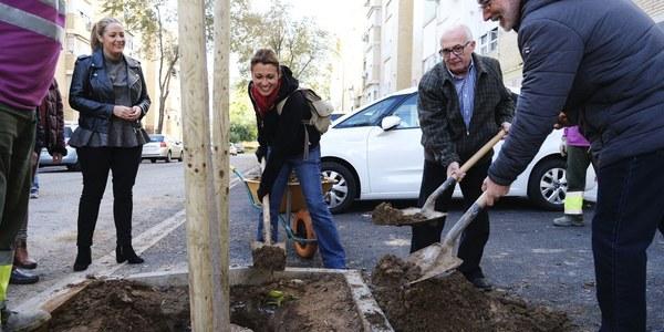 El Ayuntamiento planta en menos de un mes 1.176 árboles, casi la cuarta parte de los 5.100 previstos en esta campaña