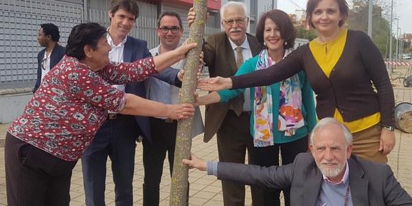 El Ayuntamiento planta unos 200 ejemplares de árboles en el Polígono Sur dentro de la planificación de 1.000 para Sevilla