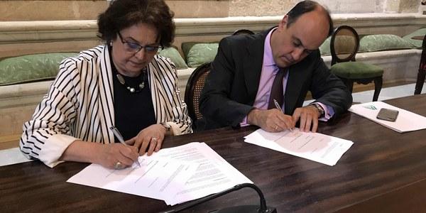 El Consejo de Administración de Mercasevilla aprueba la propuesta de convenio en el proceso del concurso voluntario de acreedores