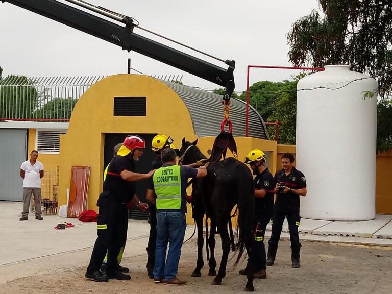 Foto Zoosanitario y Bomberos (2).jpeg