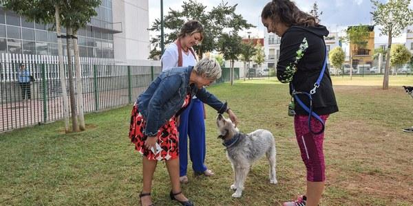 Nueva zona de ocio canino construida con material antivandálico en el Parque de la Ranilla del Distrito Nervión