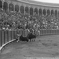 6- Joselito en el primer toro de la corrida a beneficio de la Hermandad de la Macarena en la plaza de toros de la Real Maestranza. 16.06.1918
