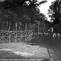 3. Jabalí en una empalizada en el Parque de María Luisa. Ya convertido en parque público, el espacio es un reducto de la época de los Montpensier. 1903 ©ICAS-SAHP, Fototeca Municipal de Sevilla, fondo Caparró
