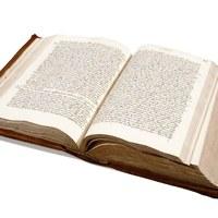 2. Uno de los volúmenes abiertos. Se aprecia la copia del final de un documentos y el comienzo de otro, así como la paginación, en el ángulo superior derecho.