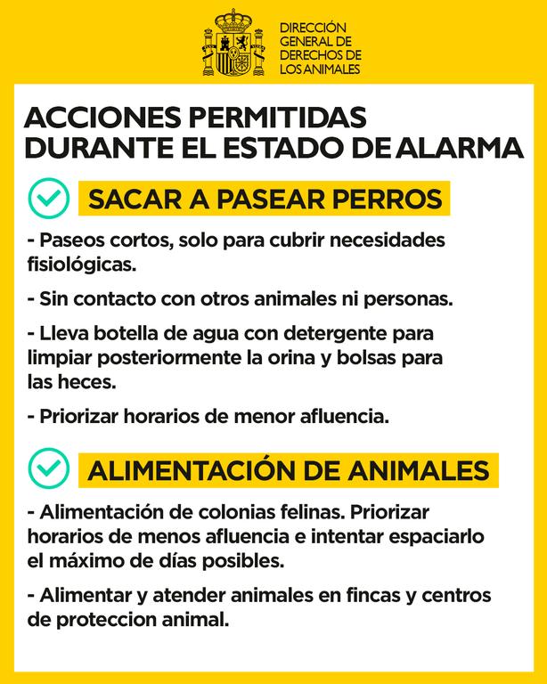 Coronavirus y animales de compañía 2.png