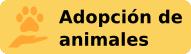 Ir a adopción de animales