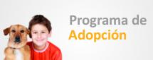 Ir a programa de adopción