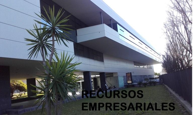 Recursos Empresariales: Empresas y Emprendimiento
