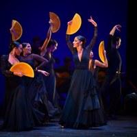 Archivo Fotográfico Bienal de Flamenco © Fotógrafa: Claudia Ruiz Caro / Ballet Flamenco de Andalucía - 25 aniversario